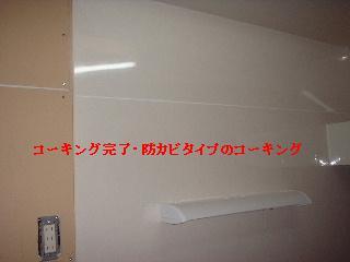 f0031037_1565120.jpg