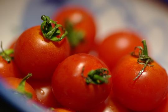 petit tomatoes_d0123171_1141473.jpg