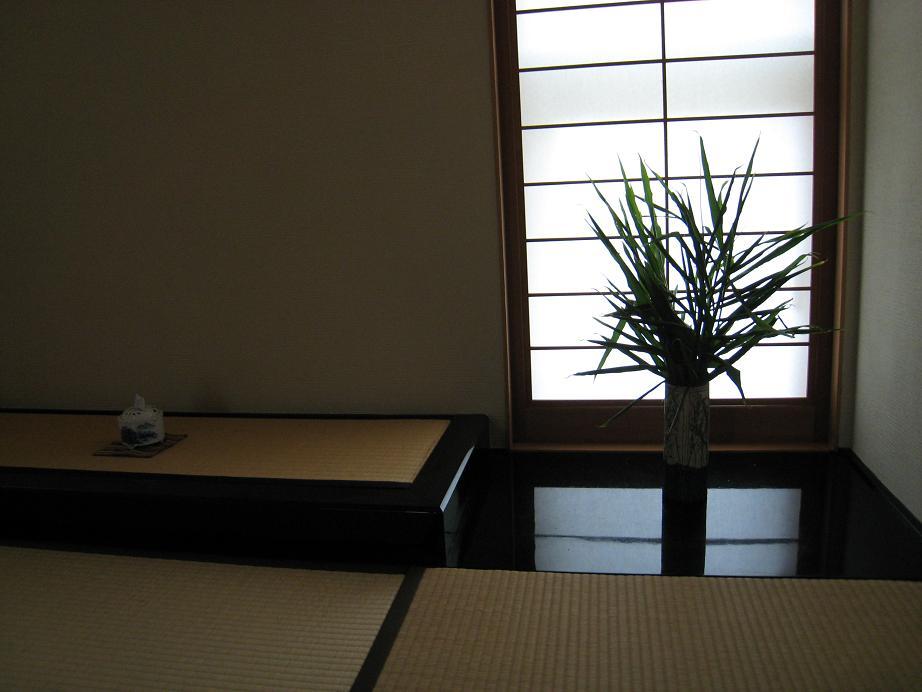 ショウガの葉っぱ_a0107574_1053313.jpg