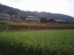 秋の飯田は、美味しさがいっぱい♪_b0103889_22181182.jpg