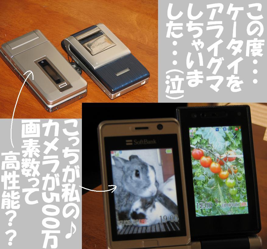 d0032004_2012933.jpg