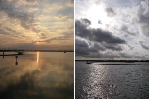ロッテルダム汽水湖にて (2007年9月頭)_c0071305_3225693.jpg
