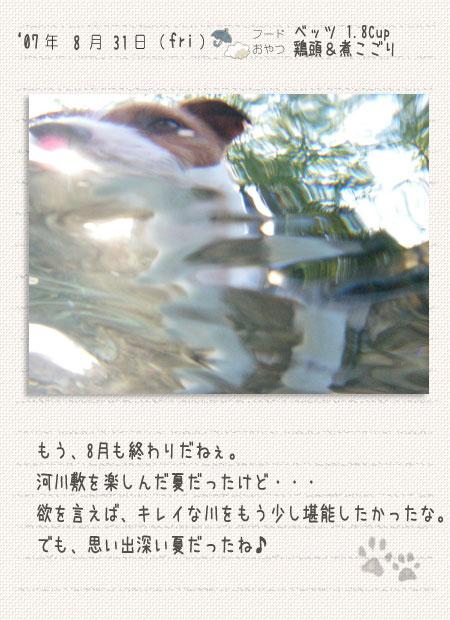b0040323_1354462.jpg