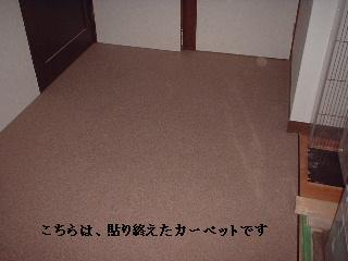 内装工事完成_f0031037_16522118.jpg