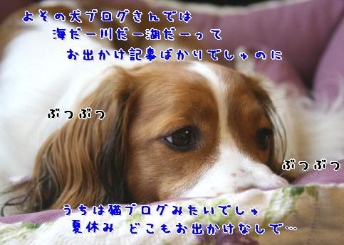 d0013149_0425954.jpg