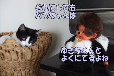 b0041182_20164019.jpg