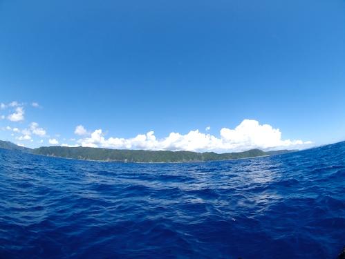 9/1 サンゴ礁モニタリング_a0010095_21294031.jpg
