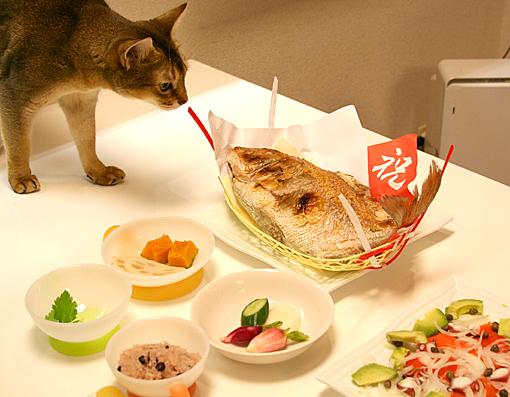 お食い初め_a0009397_22414314.jpg