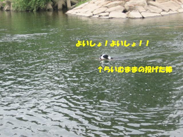 e0117976_2044451.jpg