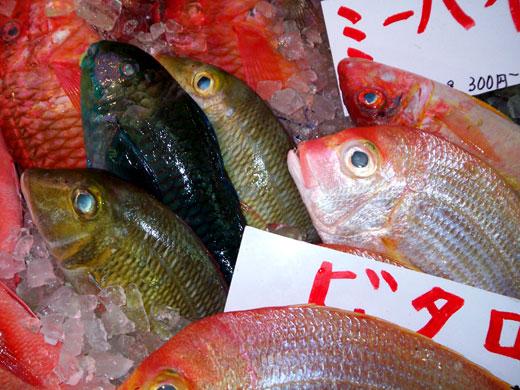 沖縄・牧志公設市場の魚たち_b0015157_0364764.jpg