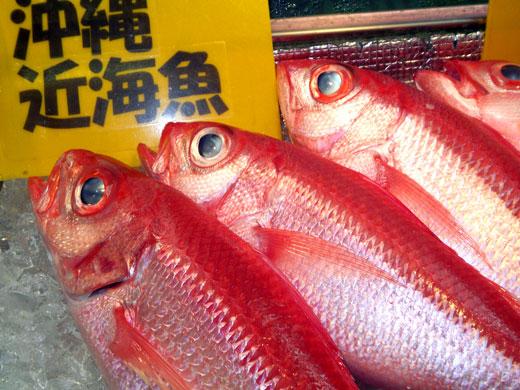 沖縄・牧志公設市場の魚たち_b0015157_0425176.jpg