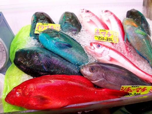 沖縄・牧志公設市場の魚たち_b0015157_04358100.jpg