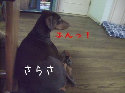 f0025769_084980.jpg