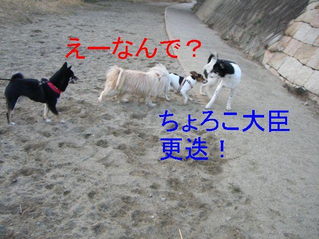 f0053952_1321311.jpg