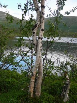 3カ国国境ハイキング その1_b0105201_2555951.jpg