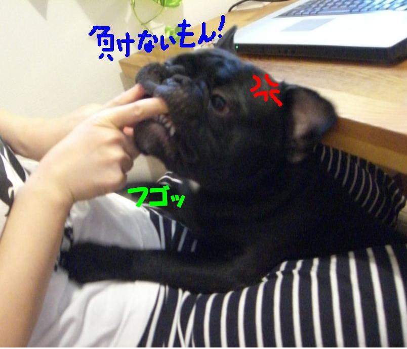 c0113109_23132953.jpg