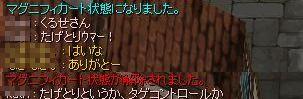 f0101240_14183370.jpg