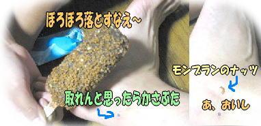 f0082367_9303444.jpg