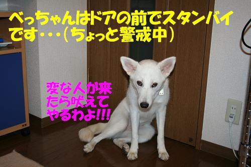 f0121712_16441240.jpg