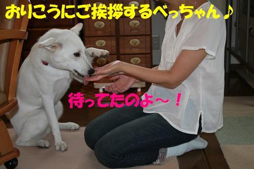 f0121712_16443573.jpg