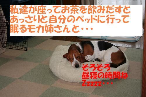 f0121712_16444459.jpg