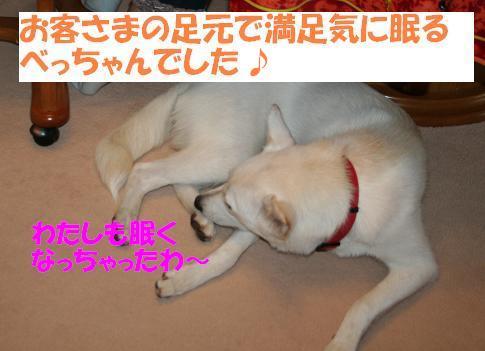 f0121712_16445243.jpg
