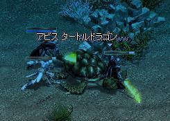 f0101117_2058363.jpg