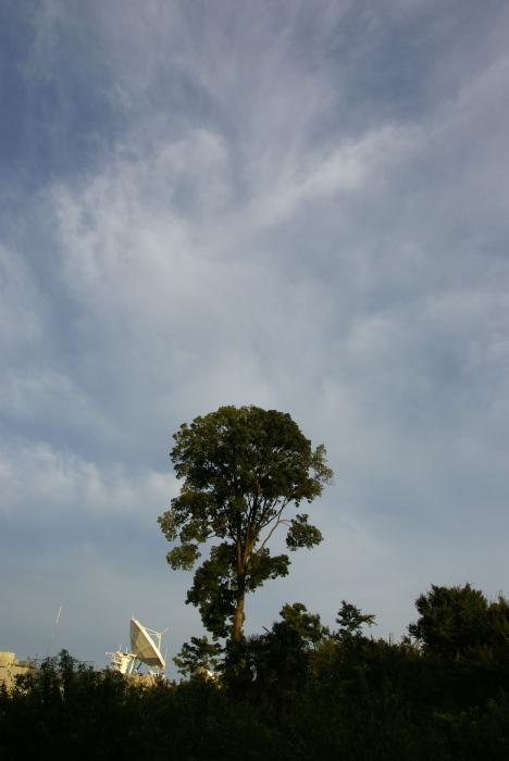 嵐去る空_e0077521_22151477.jpg