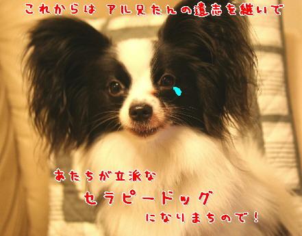 d0013149_22283.jpg