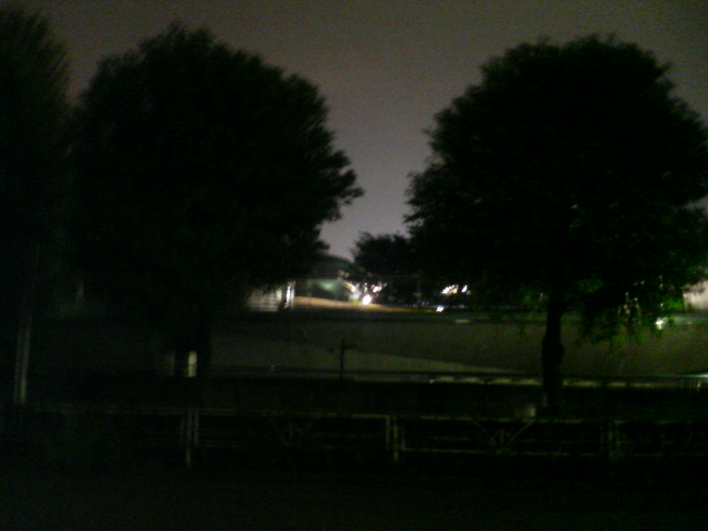 嵐が去って_a0075684_229144.jpg