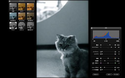 iPhotoで画像加工 『おしゃれキャット』_f0100215_16323593.jpg