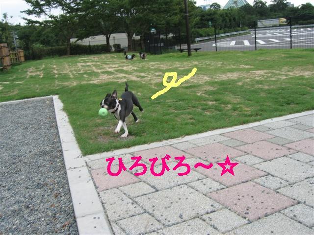 f0133316_20214141.jpg