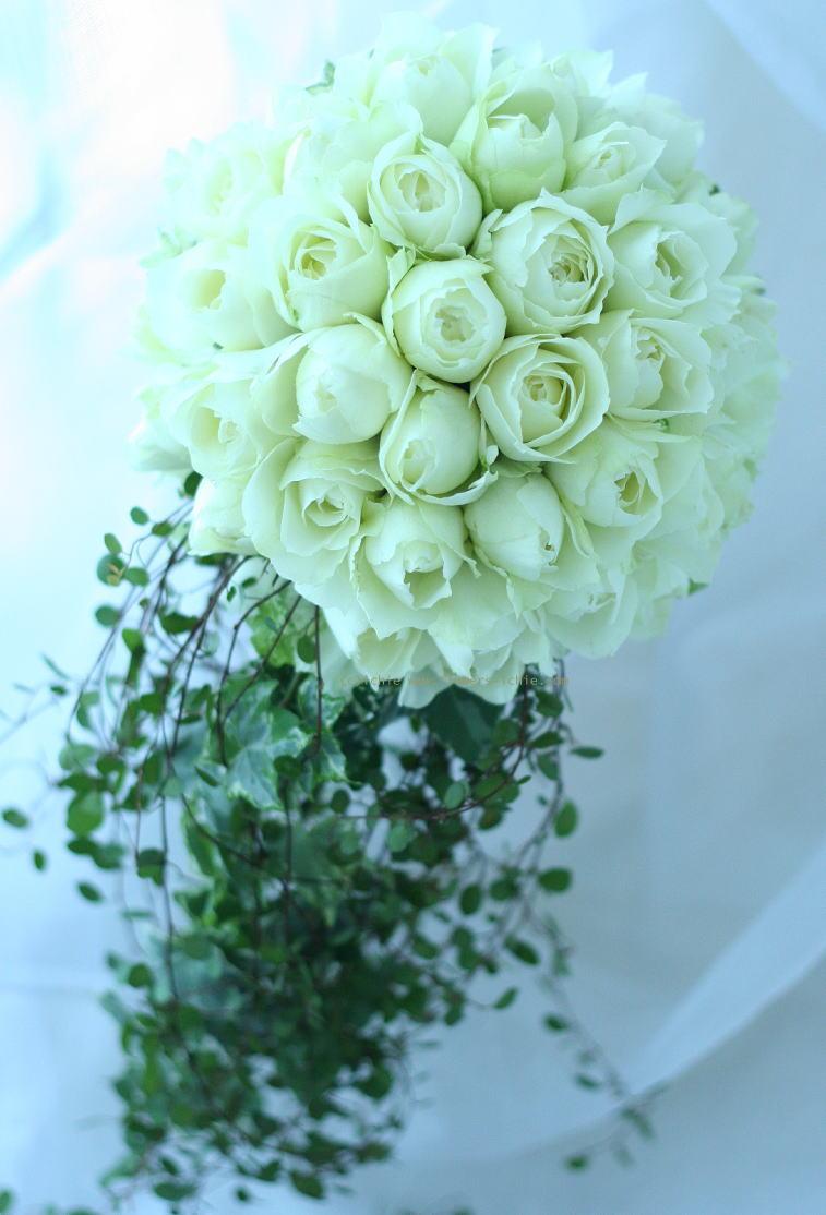 ラウンドキャスケード ころんとした丸いバラで_a0042928_2385929.jpg