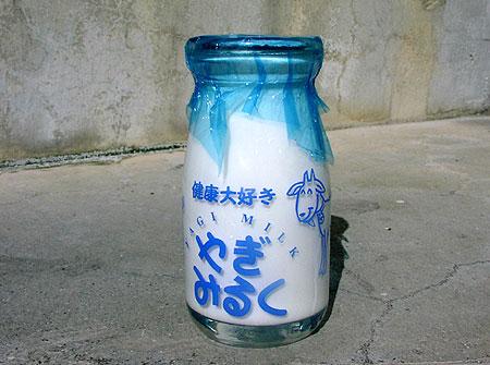 沖縄で見たもの その17_c0118393_13431556.jpg