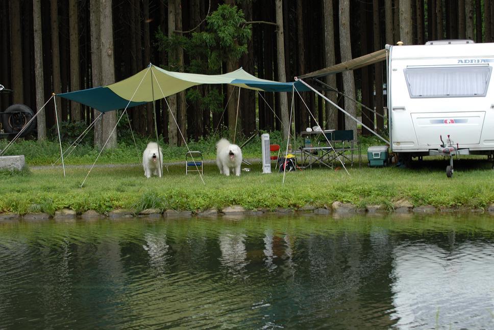 行ってきました!お気に入りのキャンプ場♪_a0049296_18333212.jpg