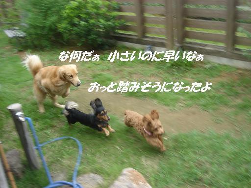 f0114128_16203338.jpg
