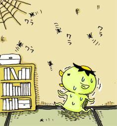 2007.9.10 蜘蛛!くも!クモ!_d0051037_22233157.jpg