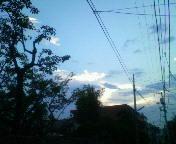 暑くて良かったこと_b0102193_19433945.jpg