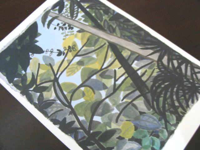 ナンプレー村の樹と空と_a0091095_2227476.jpg