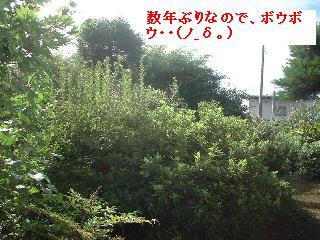 久々の大物・・笑_f0031037_1874062.jpg