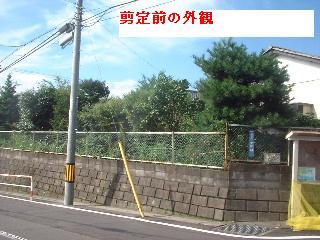 久々の大物・・笑_f0031037_187463.jpg