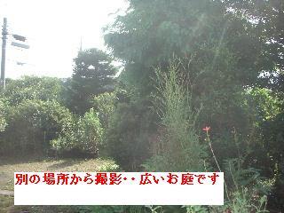 久々の大物・・笑_f0031037_1875687.jpg