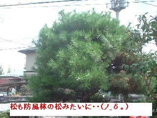 久々の大物・・笑_f0031037_1892319.jpg