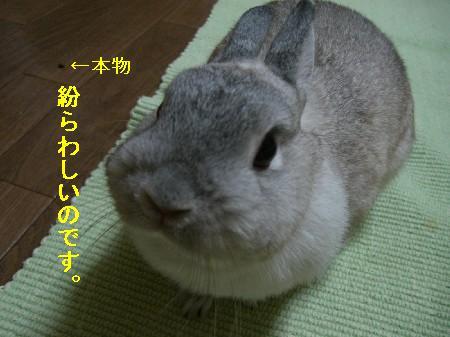 f0104057_19111073.jpg