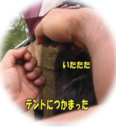 f0082367_179950.jpg