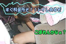f0082367_1856736.jpg