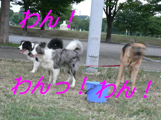 a0060497_1943483.jpg