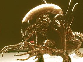 Aliens vs. Predator Requiem 予告編_a0093332_221524.jpg