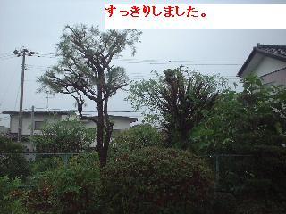 f0031037_1350581.jpg
