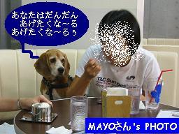 b0098660_1031529.jpg